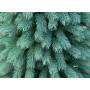 Елка искусственная Закарпатская голубая литая 1,5 м